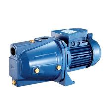 Máy bơm nước dân dụng Pentax CAM 100 - 1HP