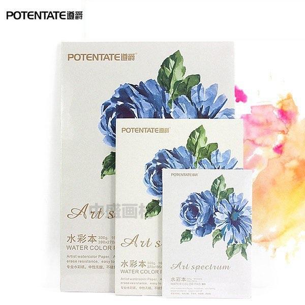 Pad Canson A4 300g Vân Smooth Cold Press Vẽ Màu Nước Potentate Cao Cấp 16 Tờ - Hoa Xanh 020721